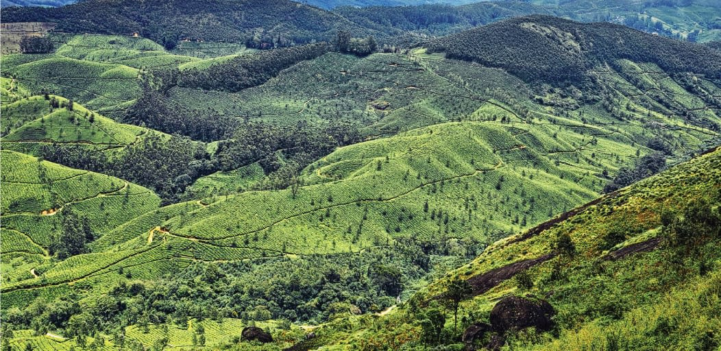 places to visit in Munnar in 1 day - Pothamdeu viewpoint