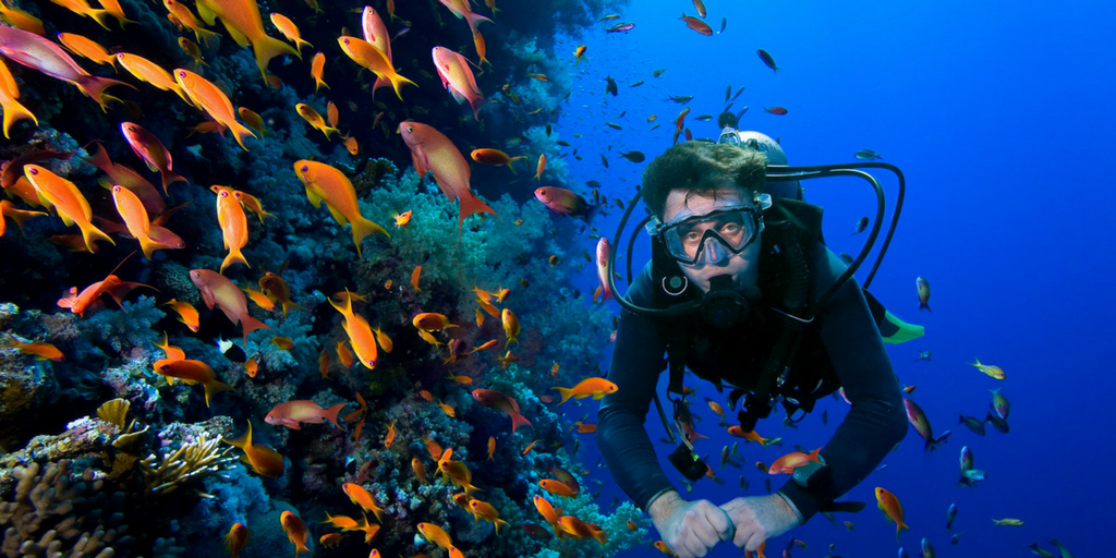 Activities You Must Try While Visiting Andaman-Scuba Diving