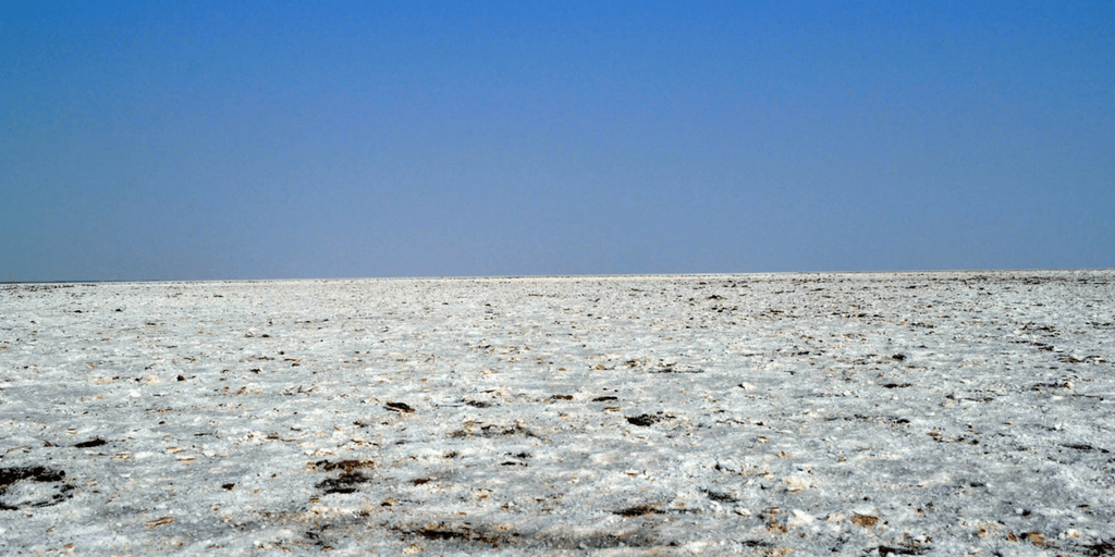 Best holiday Destinations In India-Rann of kutch
