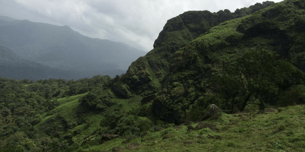 Trekking Destinations in Coorg-Kakkabe Trek
