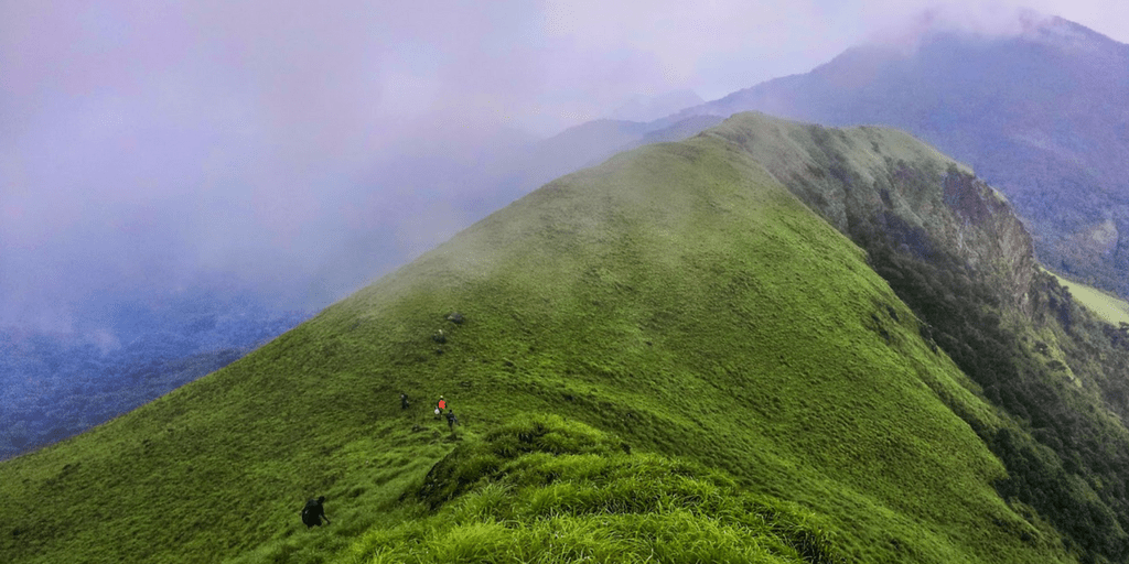 Trekking Destinations in Coorg-Nishani betta hills