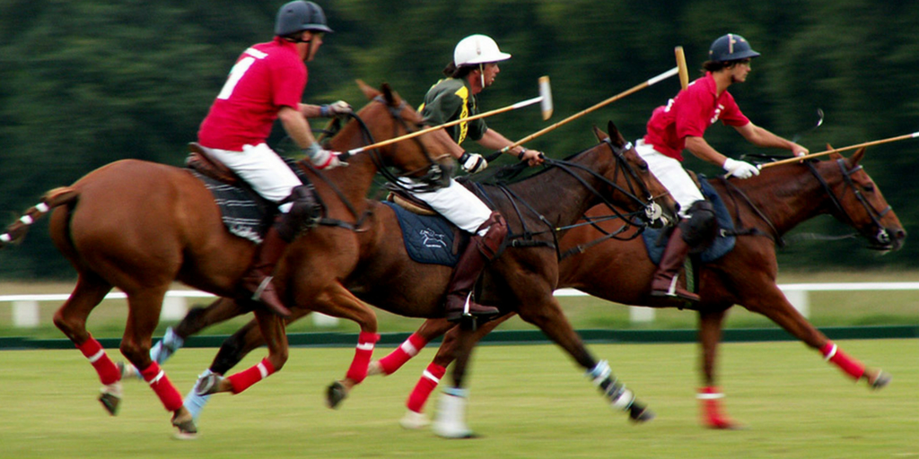 Best destinations For weekend getaways kolkata-learn horse riding and polo