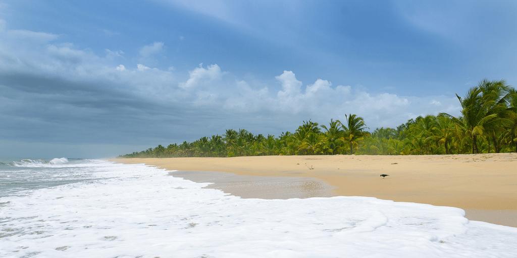 Places to visit near Kochi-Mararikulam Beach