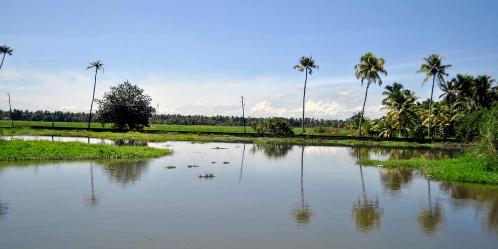 Tourist Places near Kochi-Kumarakom
