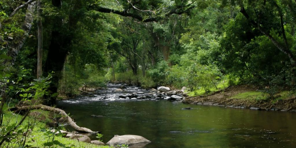 Tourist Places near Kochi-Marayoor