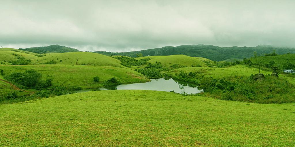 Tourist Places near Kochi-Vagamon