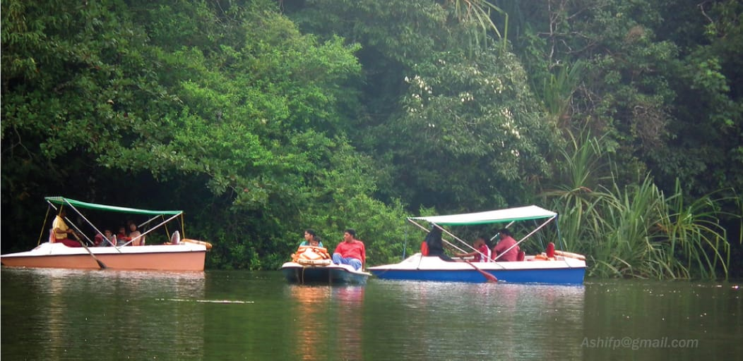 Places to visit in Wayanad in 2 Days - Pookot lake