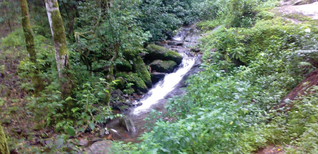 Places to visit in Wayanad in 2 Days - papasini river