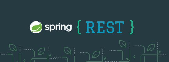 Comparing Java REST Documentation Frameworks