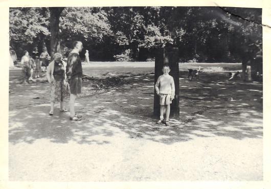 1950, Robyn