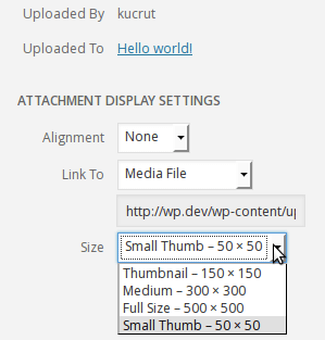 Image size dropdown on Insert Media frame, with custom image sizes.