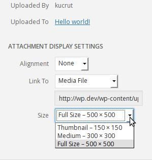 Image size dropdown on Insert Media frame