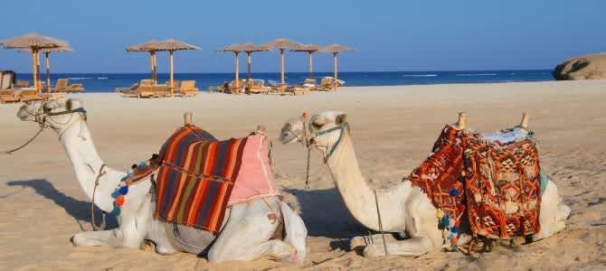 Marsa Alam, Egypt