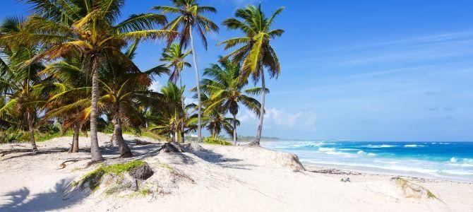 Dominikánská republika, pláž Bavaro, Punta Cana, ostrov Saona
