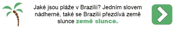 Dovolená - Brazílie