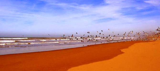 Essaouira, pláž Essaouira, Maroko