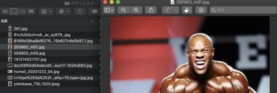 Microsoft Lobeが便利!写真の分類を簡単に可能。あなたのサイトにもAI導入
