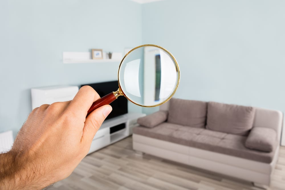 Legal considerations during open homes to keep in mind