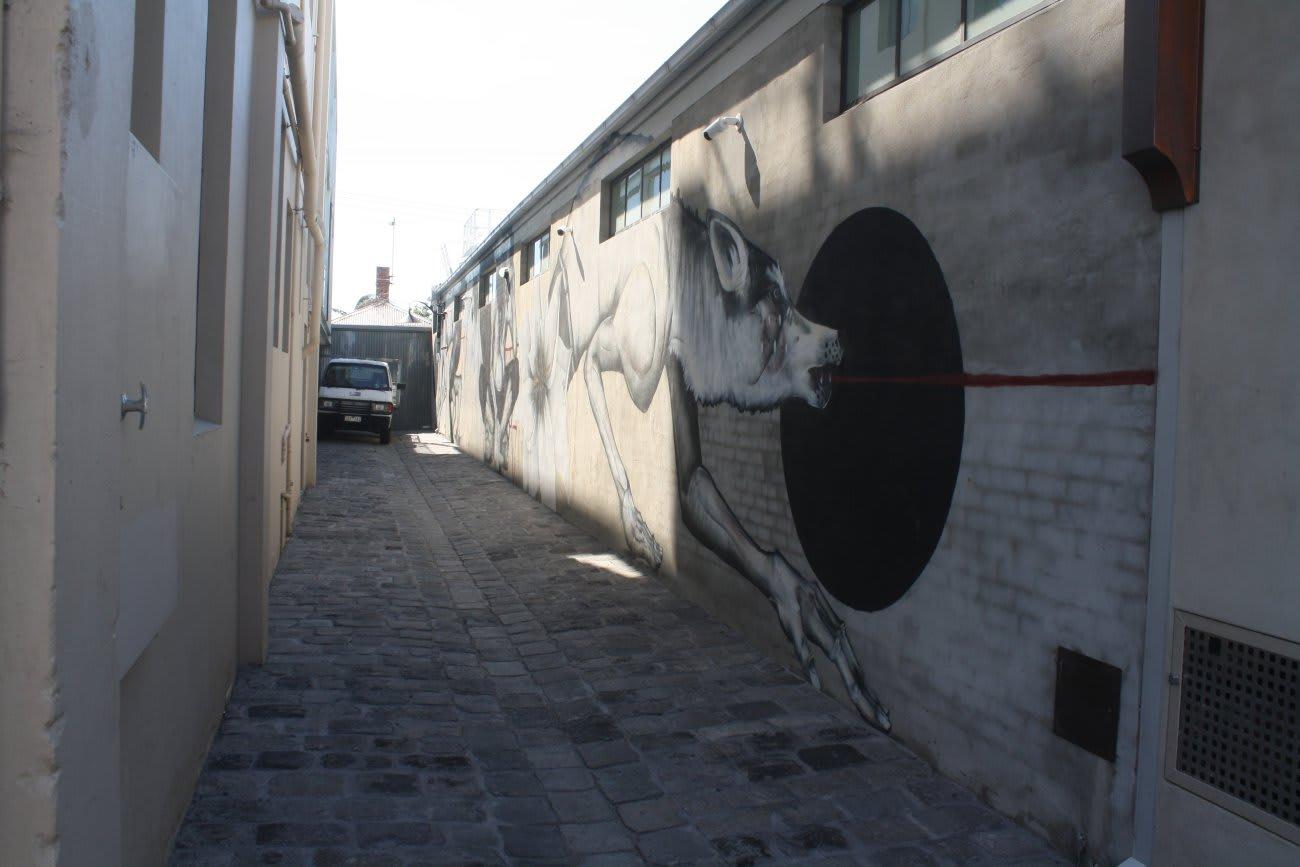 JAWS > Johnston Alexandra Wellington Smith < street relief