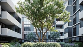 Eight reasons Clayton South's Aster Apartments should be on your shortlist