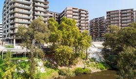 Riverbank – The Park House