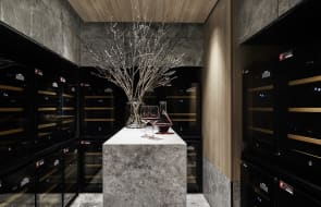 What exclusive amenities are available to High Rise buyers at Melbourne's Queens Place