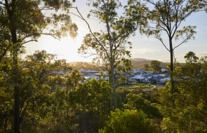 Demand spikes for land in Brisbane as Cedar Woods secure sales at Ellendale land release