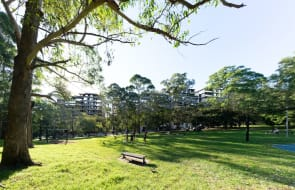 Top Spring Australia to develop 329 apartments and townhouses in Sydney's St Leonards