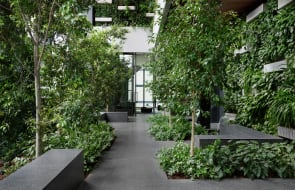 Beulah's Paragon is now complete: Take a look at landscape architect Paul Bangay's stunning urban forest within the new Melbourne tower
