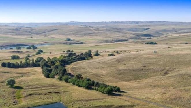 Nimmitabel's Rockybah grazing property sold after online auction
