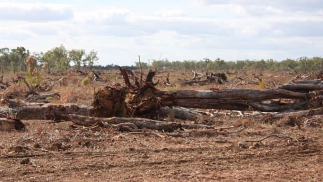 Australia is a global top-10 deforester – and Queensland is leading the way
