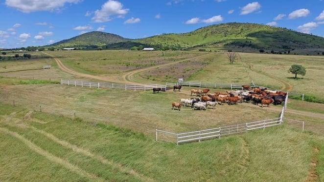 Rural Fund Management buy Rockhampton farm Comanche
