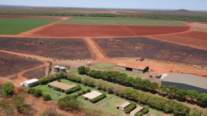 NT rural market heats up with $61 million of sales: HTW