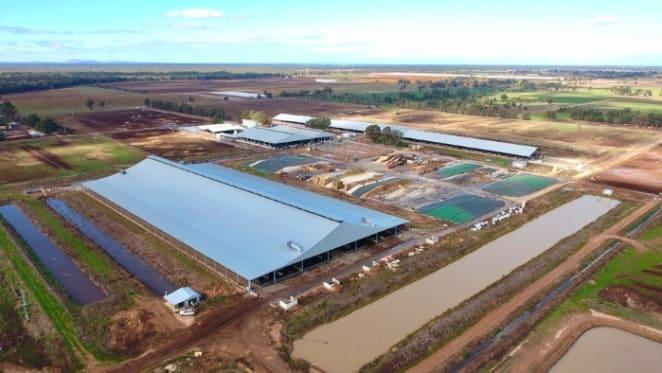 Gerry Harvey sells Victorian dairy farm