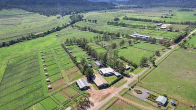 Sandy Hollow, former centrepiece of Nathan Tinkler's Hunter Valley horse breeding empire sold