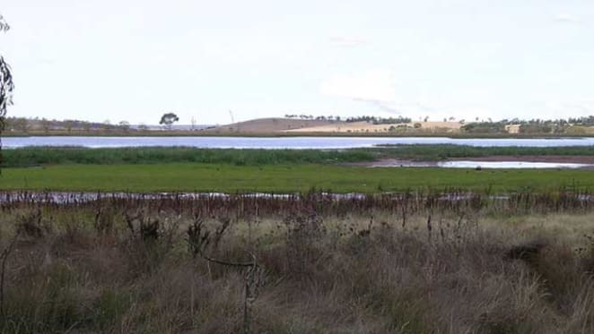 Slower rural sales across NSW Northern Tablelands: HTW