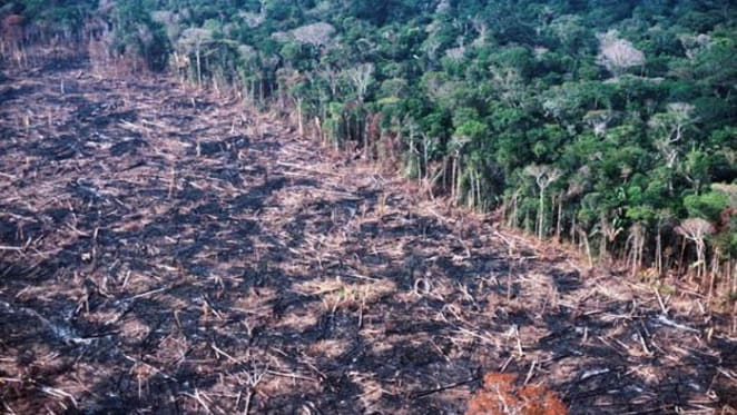 Development banks threaten to unleash an infrastructure tsunami on the environment