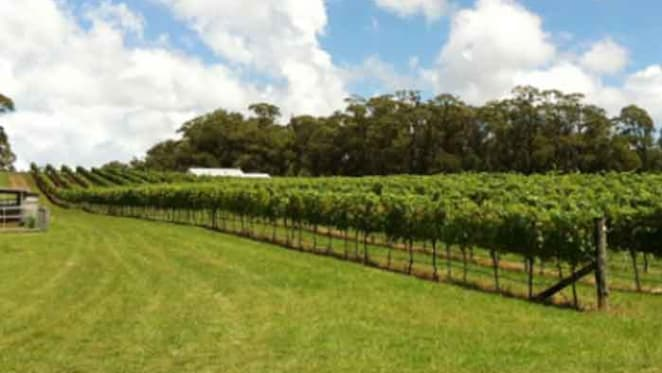 Southern Highlands winery Banjo's Run listed