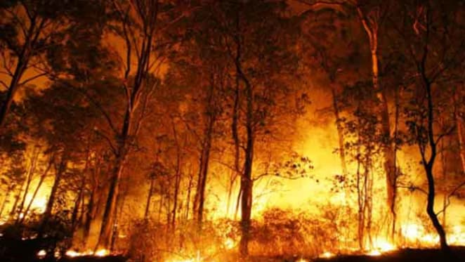 New modelling on bushfires shows how they really burn through an area