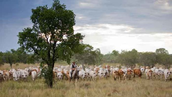 Chinese buy Ord River cattle station from the Brits