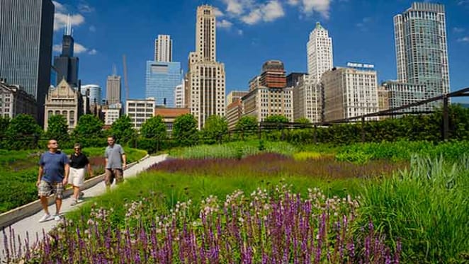 Why 'green cities' need to become a deeply lived experience