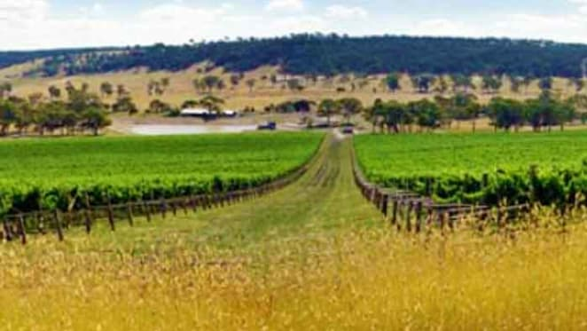 Local buyer snaps up one of Australia's largest vineyards in Victoria