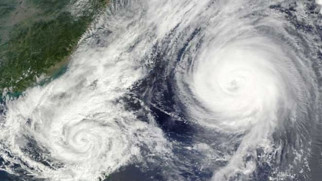 How insurers can get better at responding to natural disasters: Tayanah O'Donnell