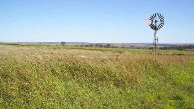 Cargill buys more on Queensland's Darling Downs