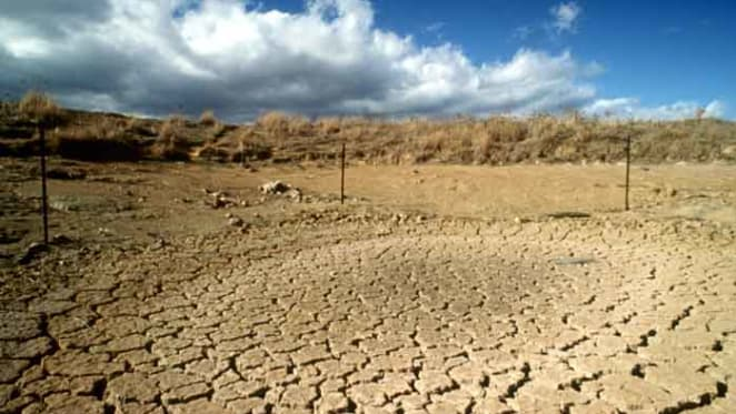 Helping farmers in distress doesn't help them be the best: the drought relief dilemma