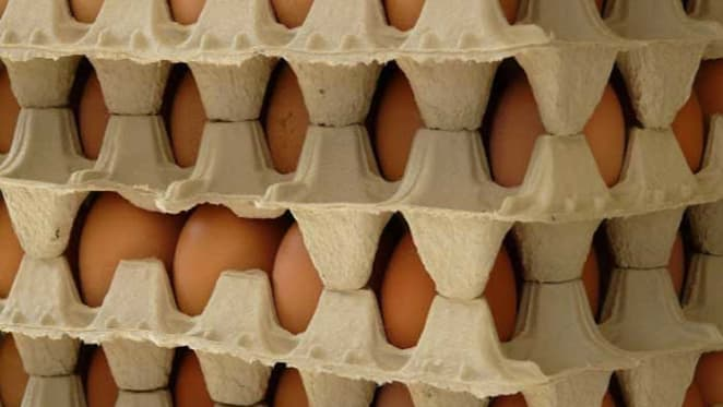 Let's hope the new arrivals like egg boxes: Pete Wargent
