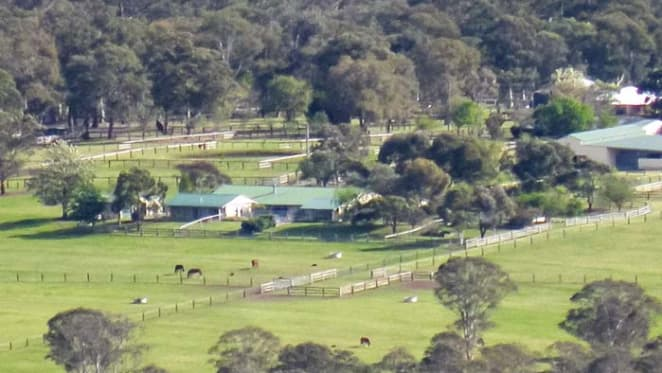 Boutique Hunter Valley broodmare farm listed