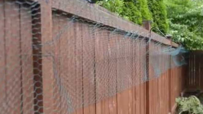 Property 101: Dividing fence disputes in QLD