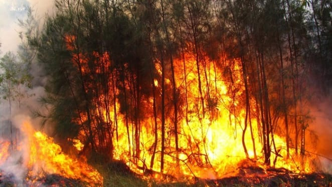 Drought, wind and heat: when fire seasons start earlier and last longer