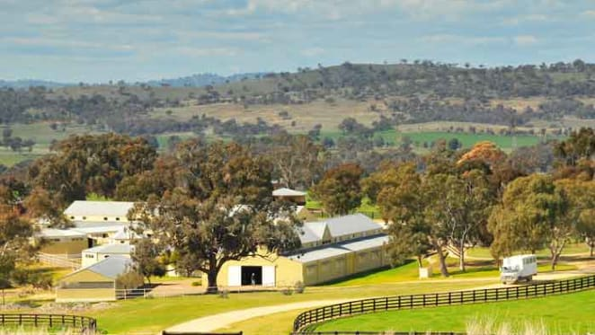 Twin Hills Stud listed by Godolphin